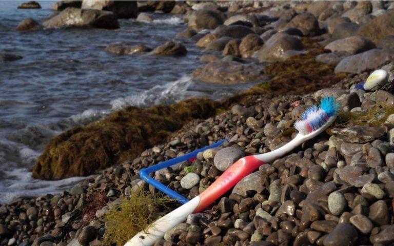 Toothbrush sitting on the shoreline