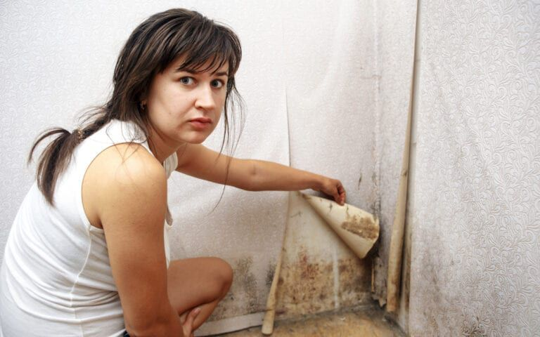 Woman revealing black mold behind wallpaper